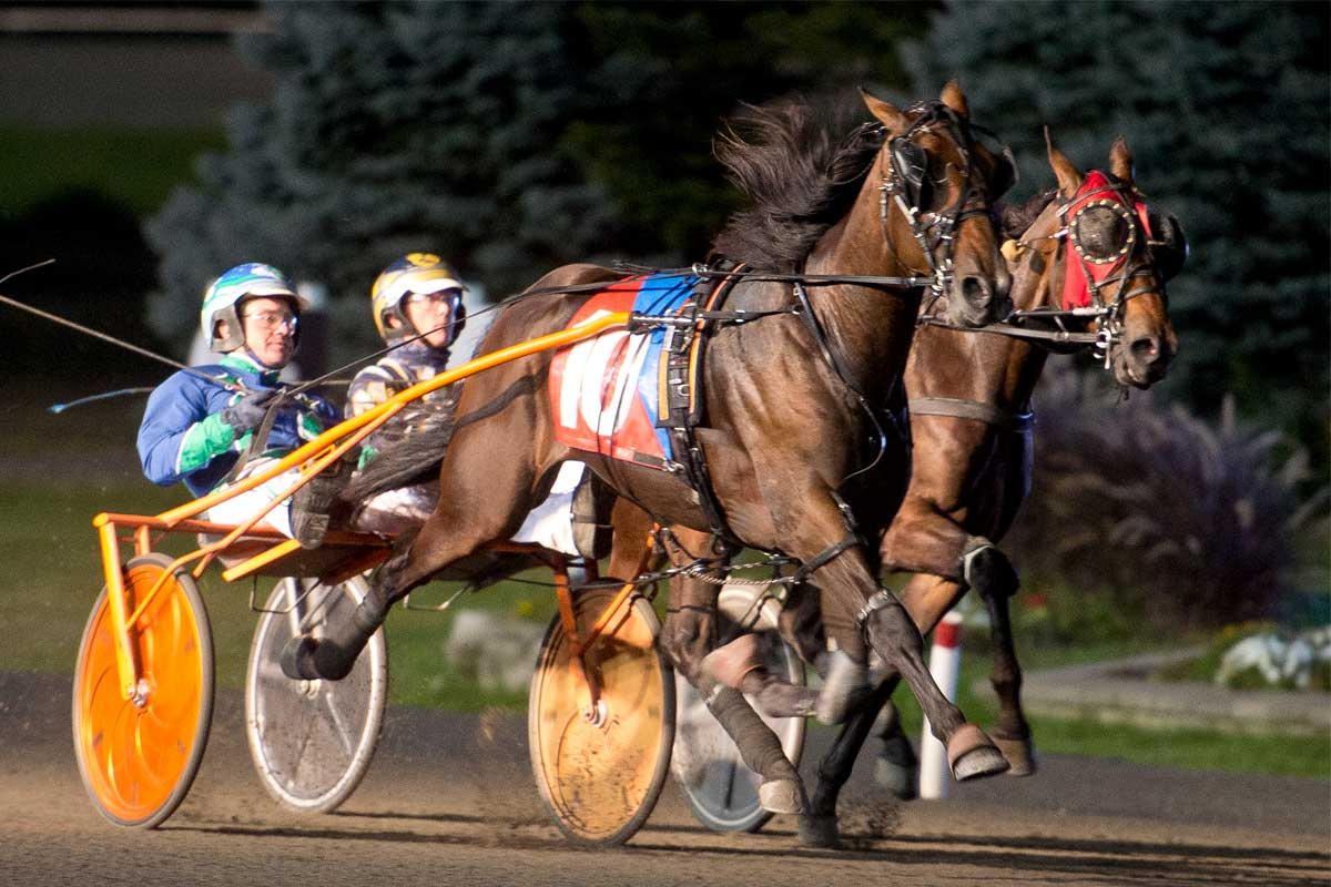 Mohawk Million 2020 winner while on the track contesting