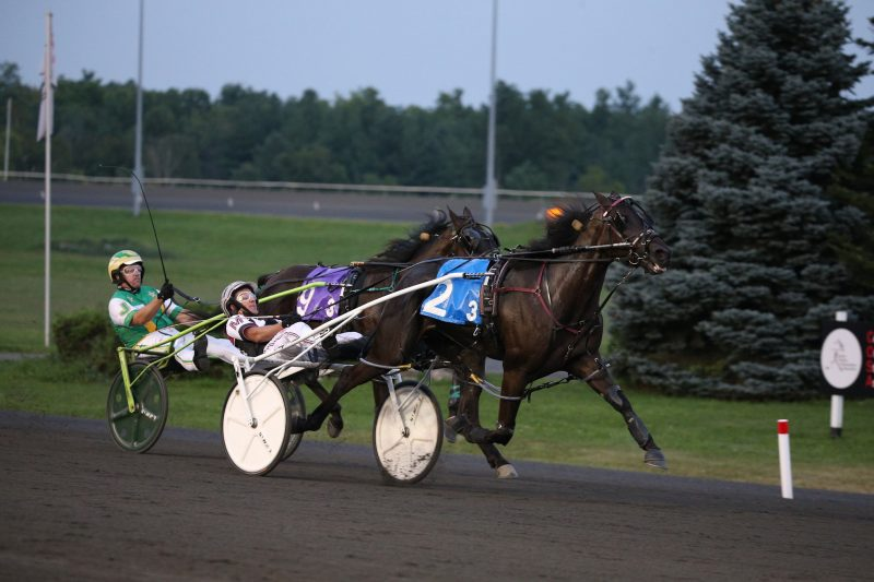 Jimmy Connor B winning an OSS Grassroots contest on Friday, August 20 at Woodbine Mohawk Park.