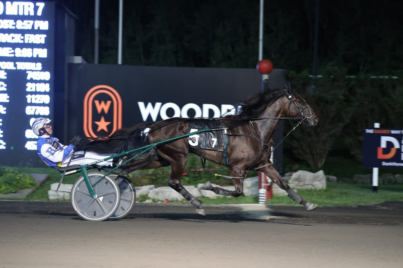 Fashion Frenzie and Louis Philippe Roy winning last Saturday's Goodtimes.