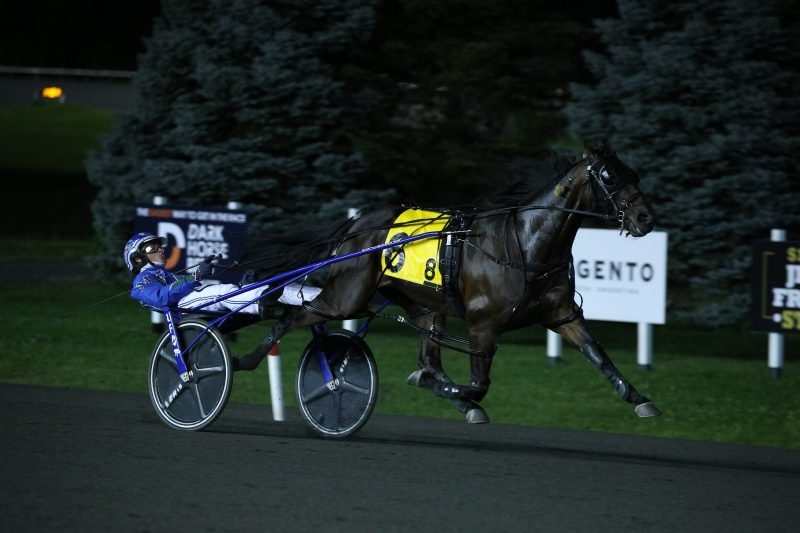 Allyway Hanover dominated the field in the 2021 Mohawk Gold Cup final at Woodbine Mohawk Park. (New Image Media)