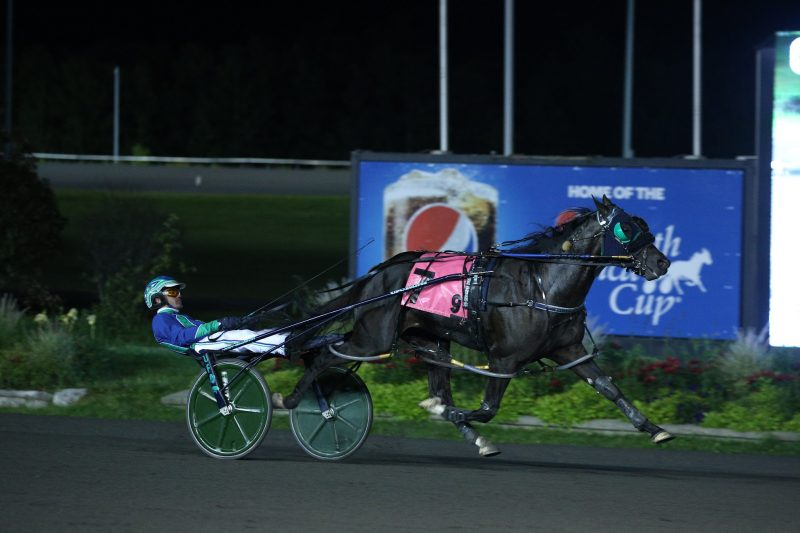 Abuckabett Hanover strides away to win the 2021 Simcoe Stakes at Woodbine Mohawk Park. (New Image Media)