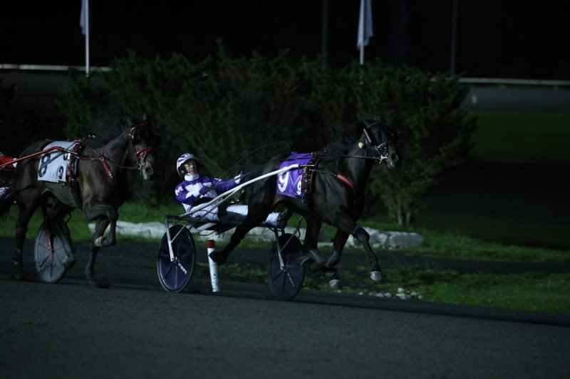 Venerable holds on to earn the Mohawk Million title at Woodbine Mohawk Park. (New Image Media)