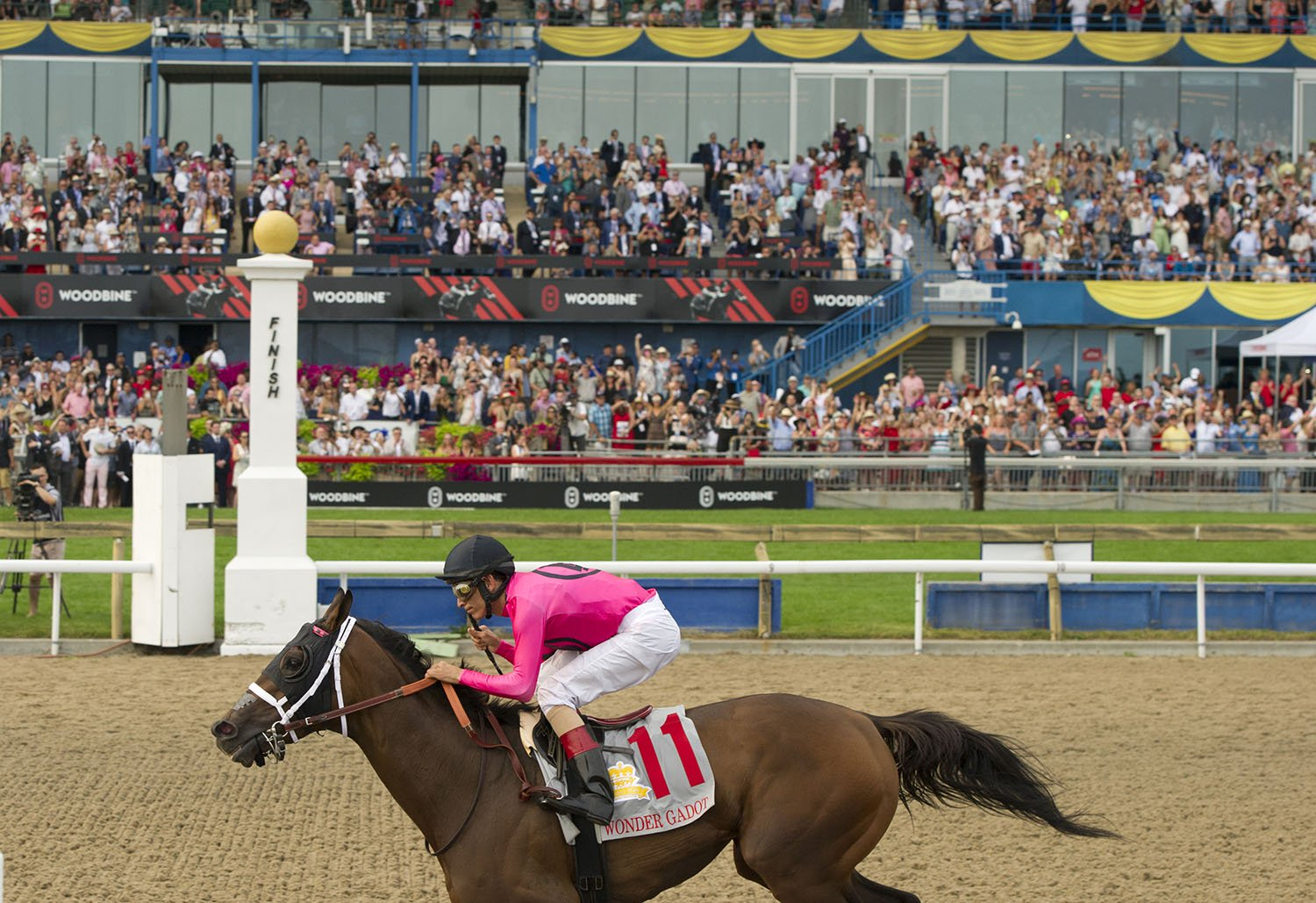 Tickets On Sale Now For The 2019 Queen S Plate Racing Festival Woodbine Racetrack