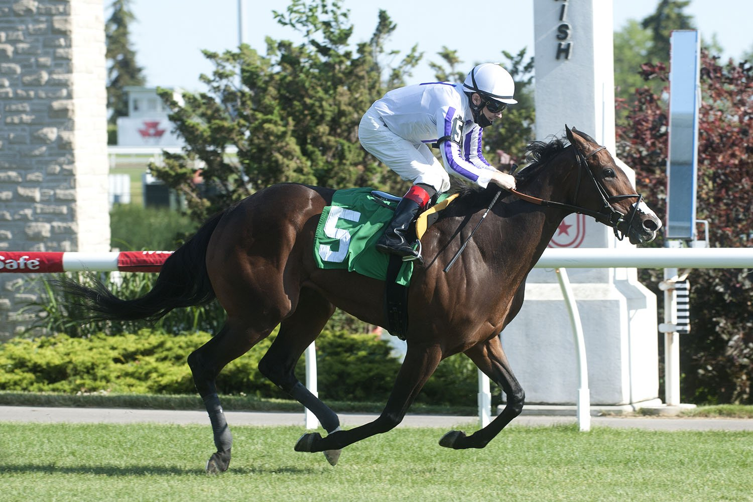Another Time winning on June 12 at Woodbine Racetrack. (Michael Burns Photo)