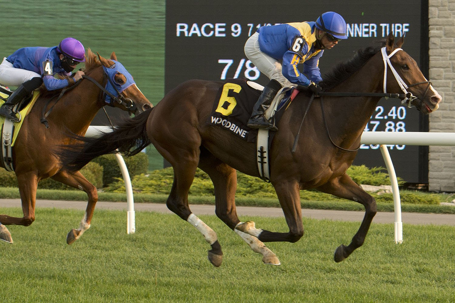 Avoman and jockey Justin Stein winning the Bull Page Stakes on September 29, 2020 at Woodbine Racetrack. (Michael Burns Photo)