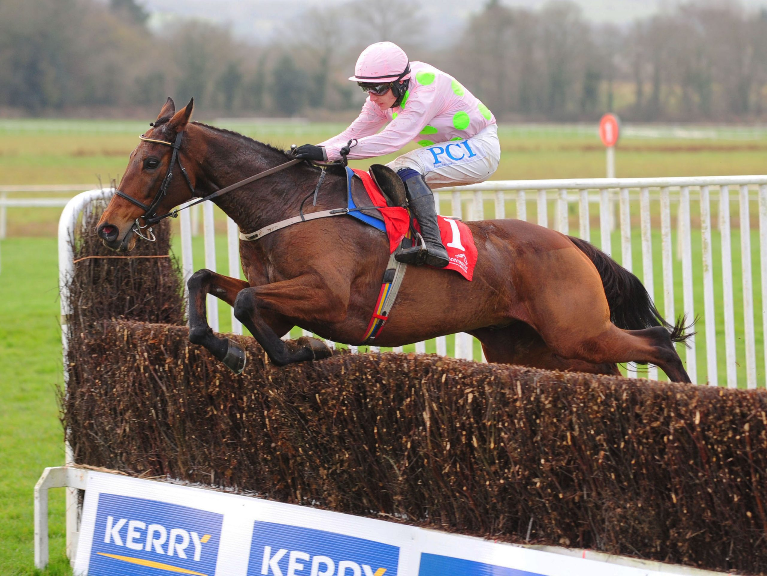 CHACUN POUR SOI and Paul Townend jump the last to win The Kerry Group Hilly Way Steeplechase.
