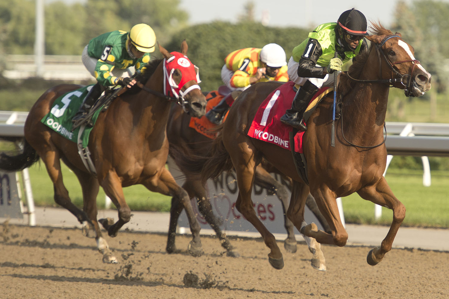 Curlin's Voyage winning the $500,000 Woodbine Oaks Presented by Budweiser over Afleet Katherine on August 15 at Woodbine Racetrack. (Michael Burns Photo)