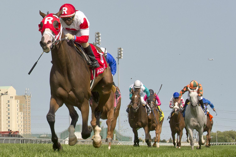 News - Woodbine Racetrack