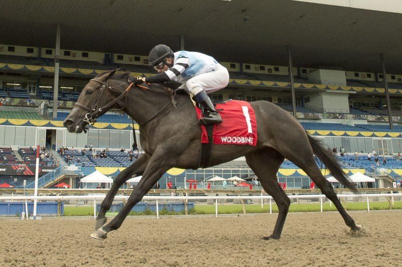 Diabolic (IRE) winning the My Dear Stakes on July 31 at Woodbine.