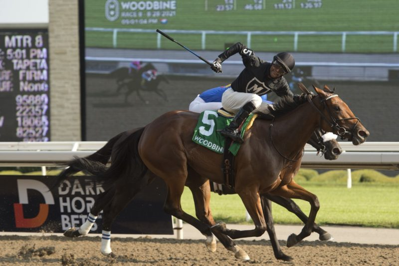 Il Malocchio and Patrick Husbands winning the Bison City on Saturday afternoon.