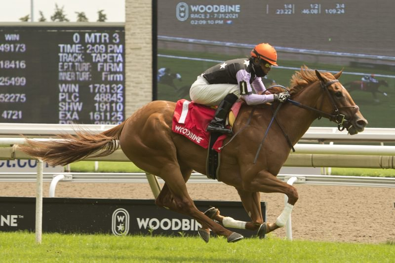 Lady War Machine, a chestnut daughter of Street Boss, trained by Josie Carroll, called the shots in taking the $100,000 Alywow Stakes, Saturday afternoon at Woodbine Racetrack in Toronto. Michael Burns photo.