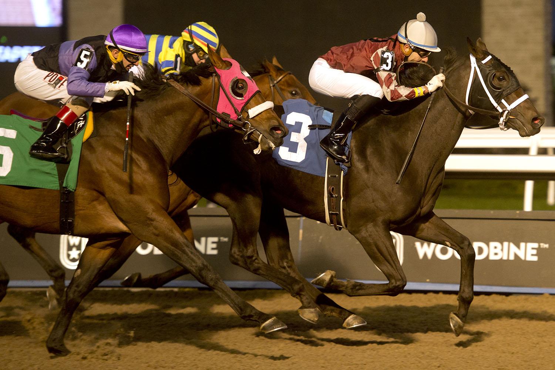 Jockey Leo Salles in action, winning with Lookinatamiracle on October 17, 2020 at Woodbine Racetrack. (Michael Burns Photo)