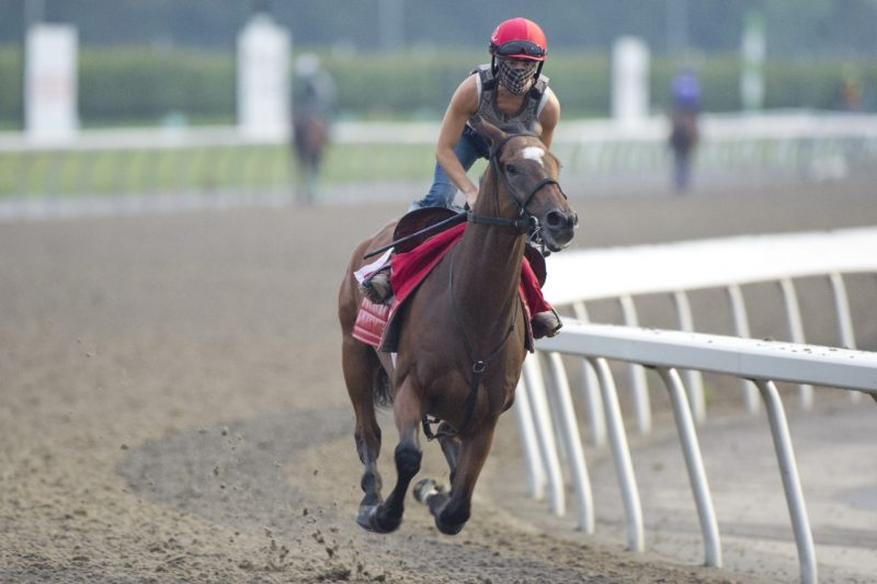 March To The Arch preparing for the Ricoh Woodbine Mile on September 13th.