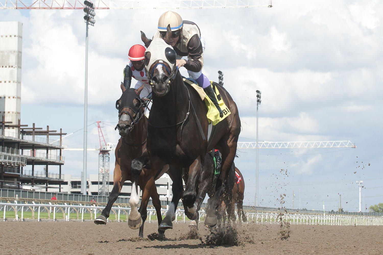 Mighty Heart and jockey Daisuke Fukumoto winning the $150,000 Dominion Day Stakes (Grade 3) on Thursday, July 1 at Woodbine Racetrack. (Michael Burns Photo)