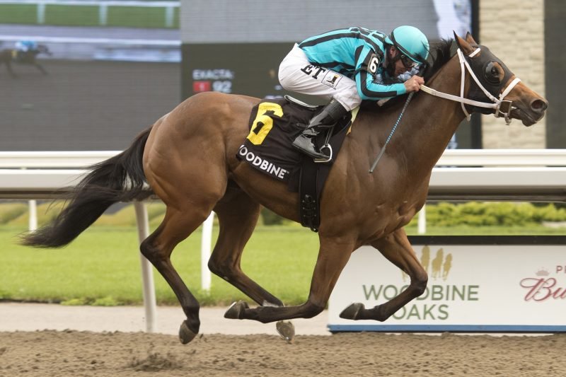 One Timer, under E.T. Baird, made it two impressive wins in a row, this time in the $125,000 Victoria Stakes on Saturday afternoon at Woodbine Racetrack in Toronto. Michael Burns photo.