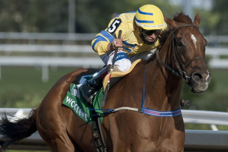 Pink Lloyd thunders home in the 2020 Jacques Cartier Stakes (Gr. 3).