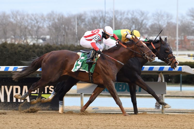 Queen's Plate hopeful Weyburn won the Grade 3 Gotham at Aqueduct on March 6 Photo courtesy of Aqueduct / NYRA.