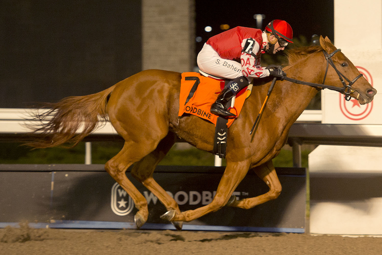 Red River Rebel and jockey Steven Bahen winning the $100,000 Frost King Stakes on Friday, Nov. 20 at Woodbine Racetrack. (Michael Burns Photo)