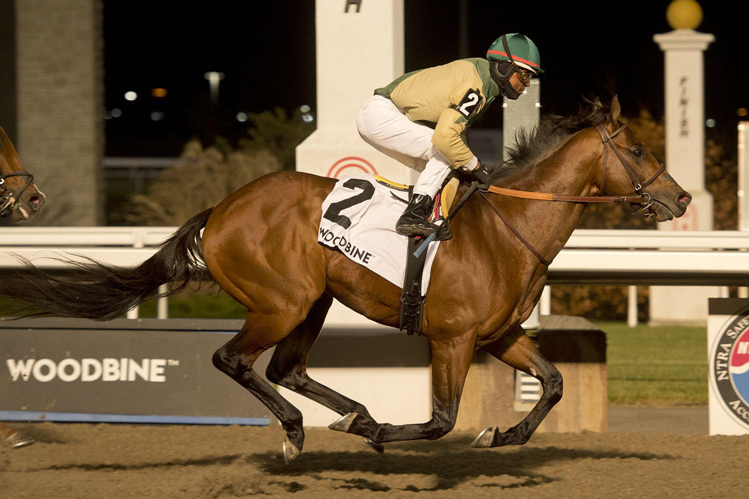 Ride a Comet and jockey Patrick Husbands winning the $175,000 Kennedy Road Stakes (Grade 2) on Saturday, Nov. 21 at Woodbine Racetrack. (Michael Burns Photo)