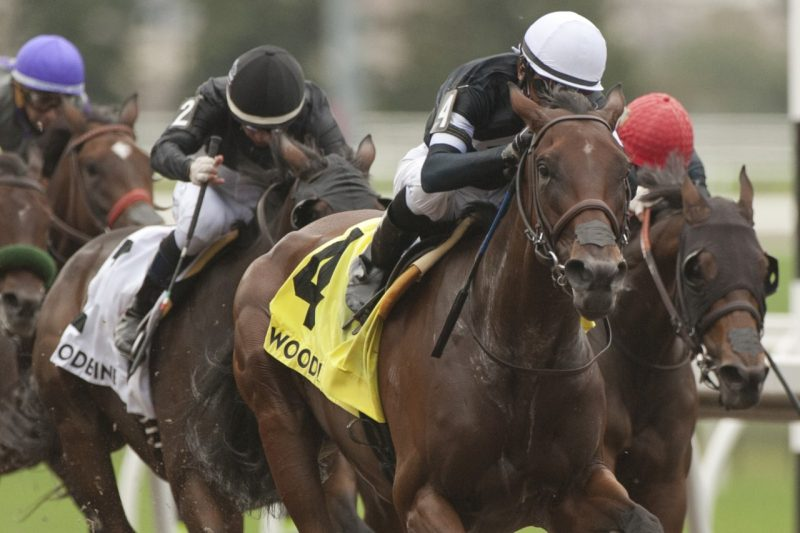 Stargaze with Patrick Husbands capture the Belle Mahone Stakes, Sept 2021. (Michael Burns Photo)