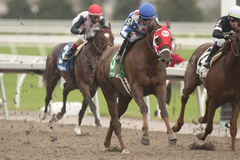 Special Forces was a force in the Grade 3 Durham Cup winning with jockey Justin Stein at Woodbine on October 10, 2021. (Michael Burns Photo)