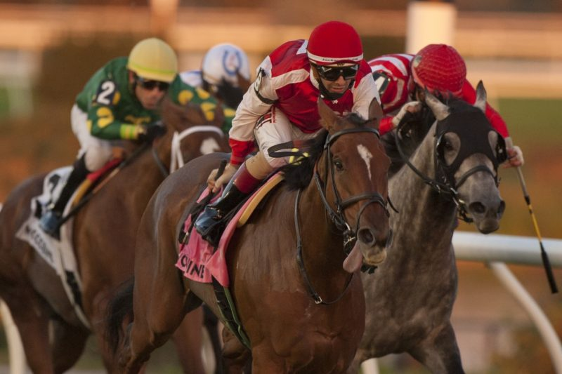 Summer Sunday winning the Zadracarta Stakes September 10, 2021. (Michael Burns Photo)