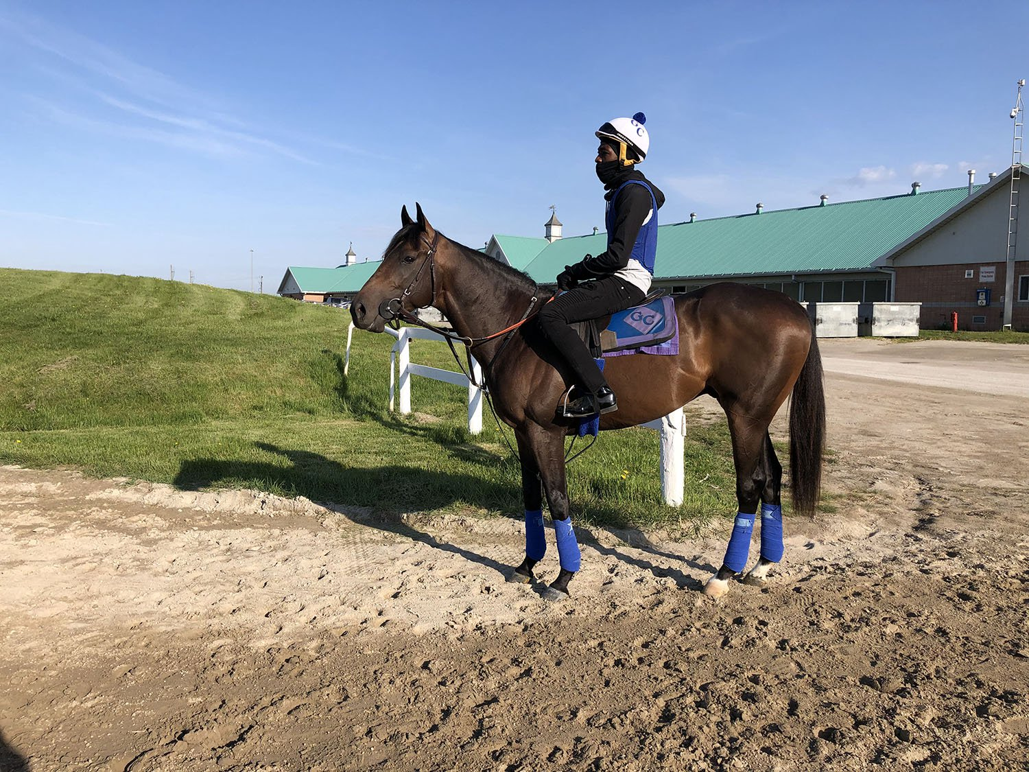 Tidal Forces at Woodbine Racetrack. (Provided Photo)