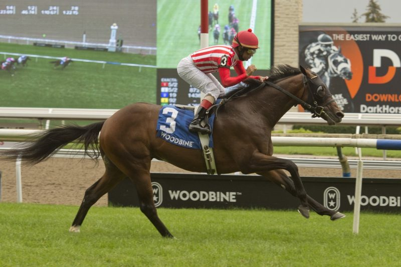 War Bomber winning the 2021 edition of the Toronto Cup. (Michael Burns Photo).