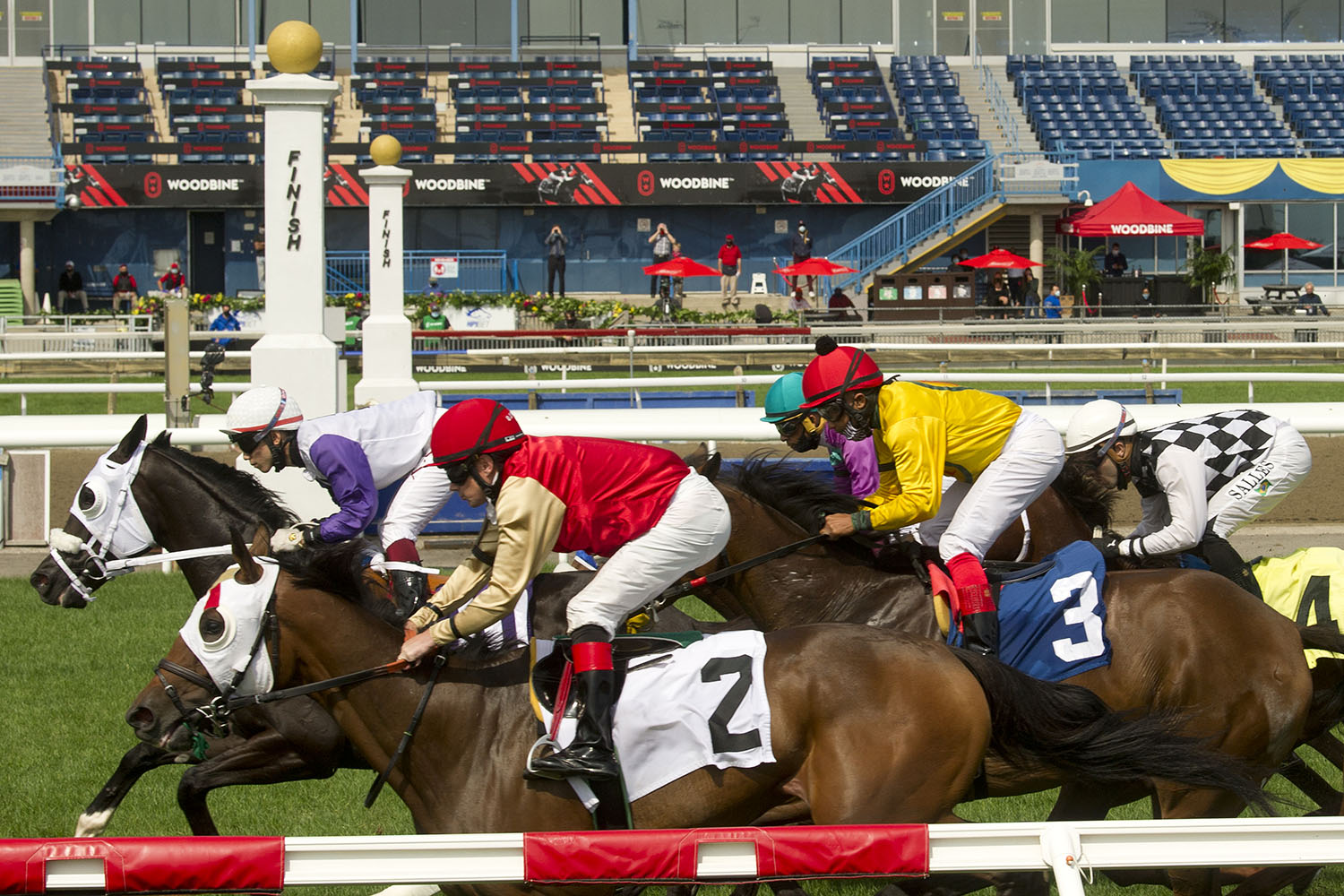 Racing action at Woodbine. (Michael Burns Photo)